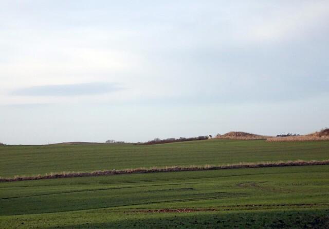 Stor interesse for multifunktionel jordfordeling