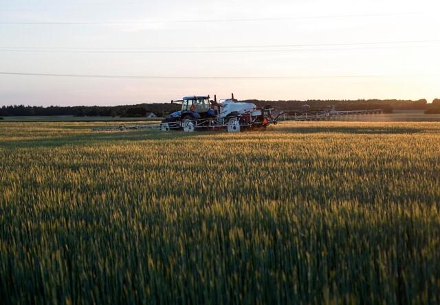 Landbrugsstyrelsen får ny direktør