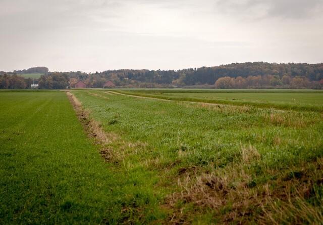 Udtagning af lavbundsjorde kan forringe kreditten for landmændene