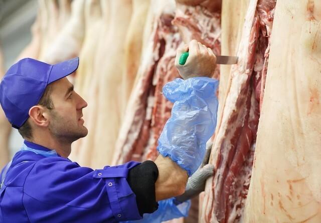 Nye regler for udenlandsk arbejdskraft på slagterier i Tyskland