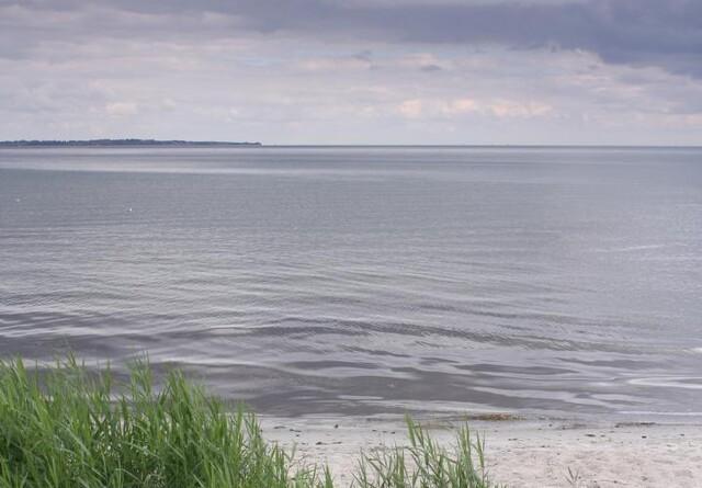 Gentofte Kommune har udledt 10 milliarder liter urenset spildevand