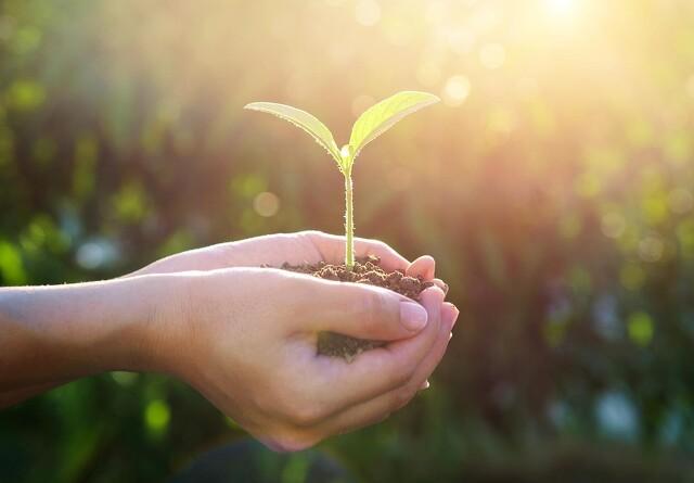 Corteva vil øge indsatsen for bæredygtighed