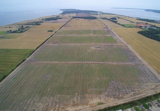80 hektar landbrugsjord bruges til solceller