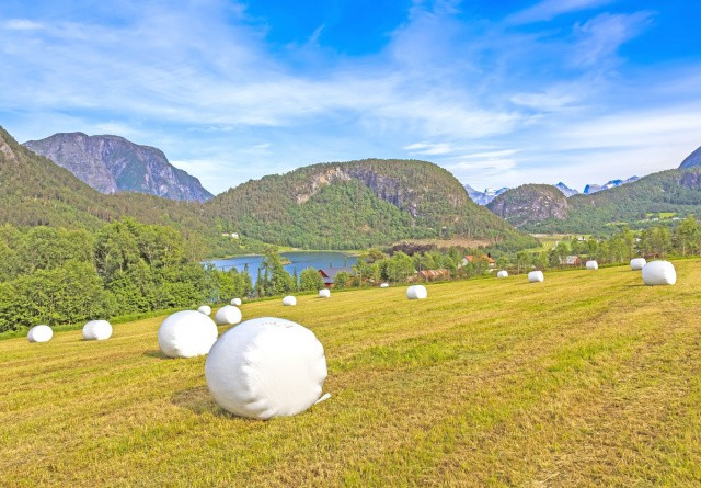 Norge: Små bedrifter med mange maskiner