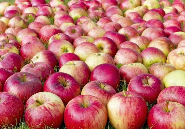 Dansk frugt og grønt har stadig færrest pesticidrester