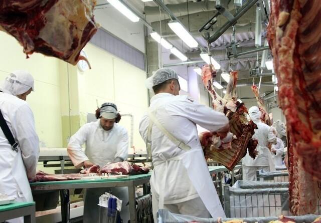I Kina spiser de hunde - og store mængder dansk svinekød