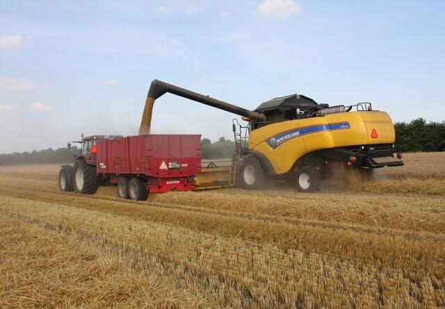 Begynd høsten tidligt og tør kornet