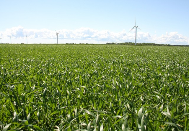 Coop vil hjælpe dansk øko-landbrug