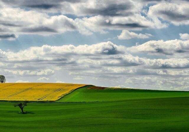DN kræver nye forhandlinger om landbrugspakken
