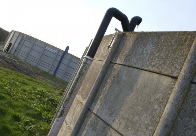 Greenpeace: EU belønner de største ammoniak-svinere