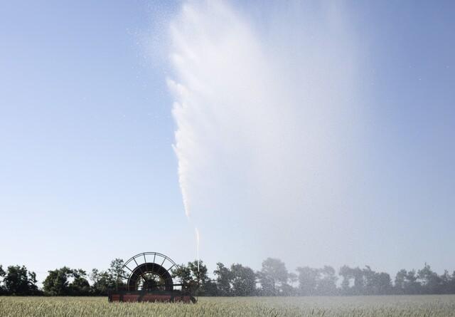 Tørke koster Karen 100.000 kr i mere vand
