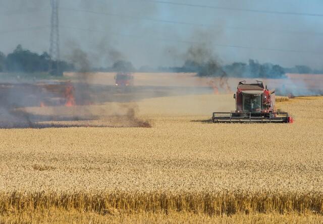 40 brandfolk kæmper med stor markbrand
