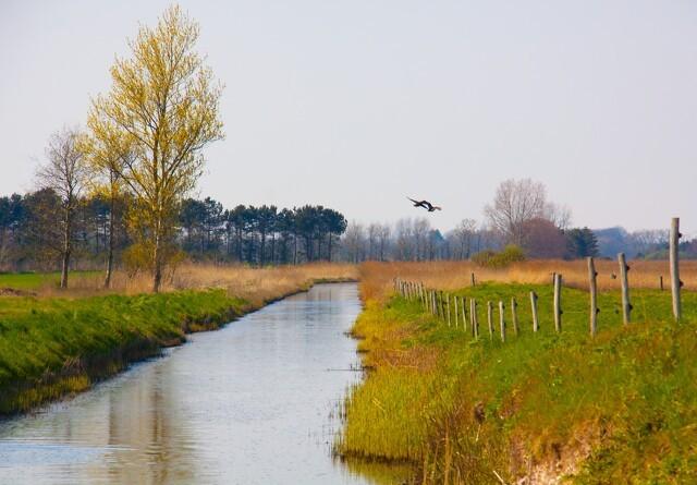 Landmænd kan  tage vand fra åer og søer