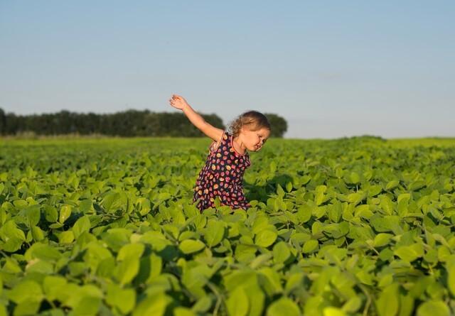 Farmeroplevelse hitter på Bygholm