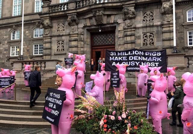 Greenpeace i griseklæder indtager Christiansborg