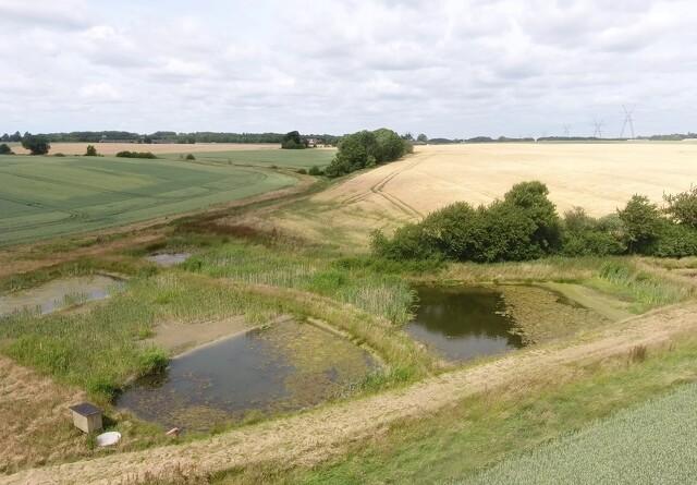 Minivådområder er en fordel for landbruget