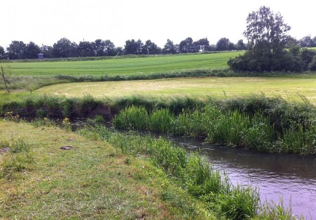 Agri Nord-formand:Flere små vandløb skal ud af vandplanerne