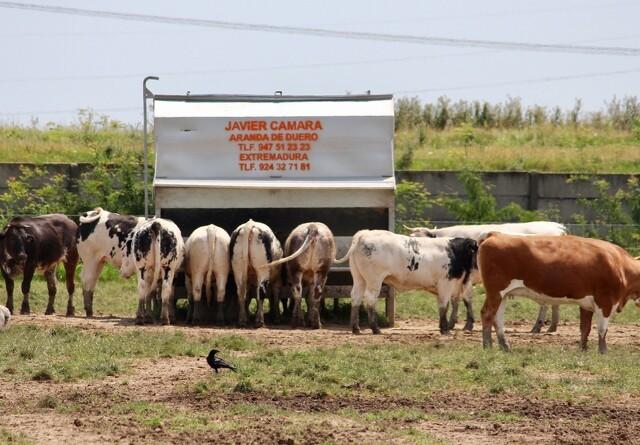 Overby med udstyr til mobilt husdyrbrug på Nutrifair