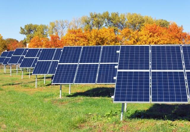 Landmænd kræver solcellearealer af kommunerne