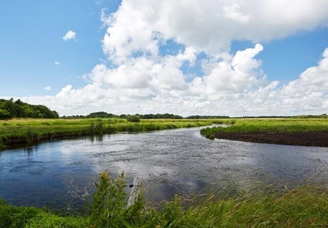 Kongeåkomité skal værne om vandløb og afvanding