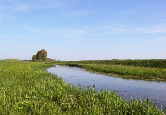 Afgørelse om Åkær Å kan få betydning for landbrug i hele Danmark