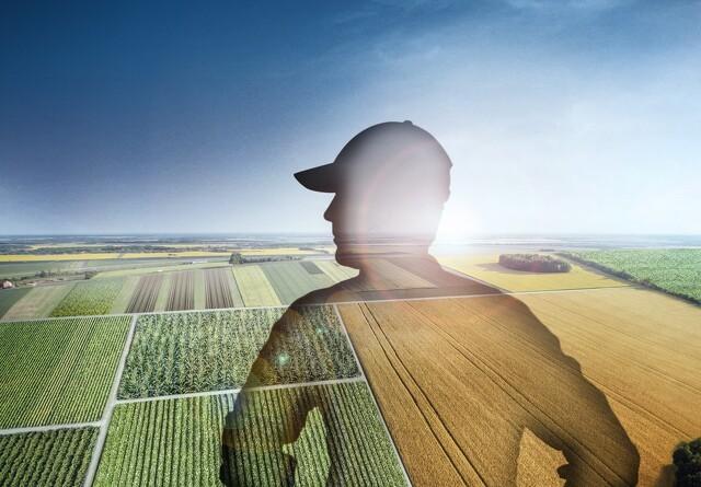 BASF får nyt svampemiddel  godkendt i Europa