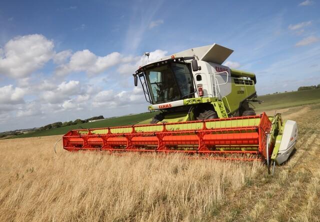 Trods dårlige vilkår er danske landmænd i toppen i EU