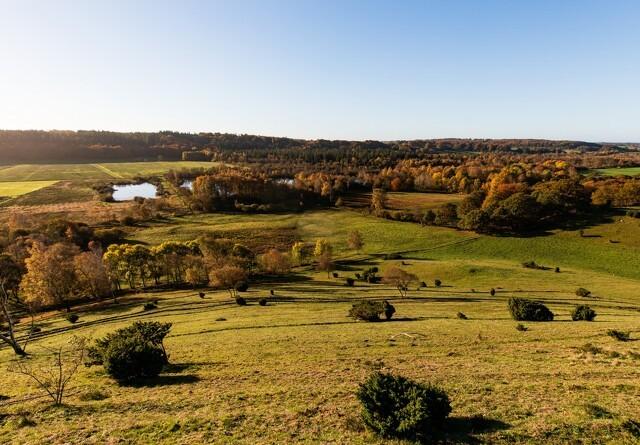 Naturfond køber 60 hektar jord