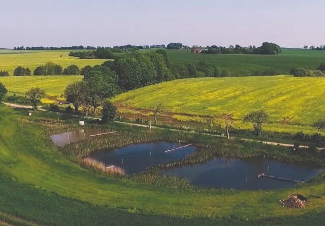 Så kan landmænd søge tilskud til minivådområder