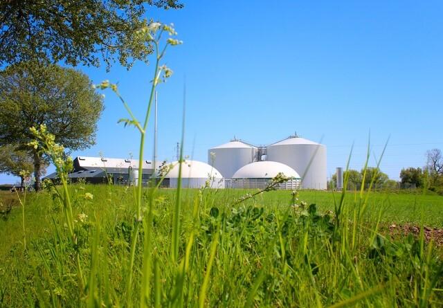Biogasanlæg håber på et gråt og mildt forår