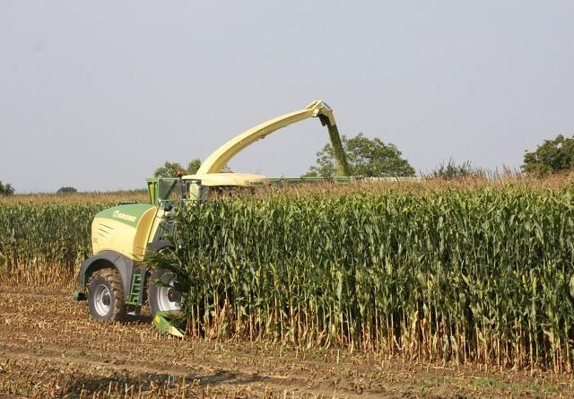 Ugunstige vejrprognoser sender afgrøder i vejret