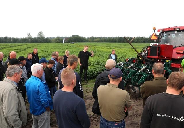 Rekordmange besøgte kartoffeldagen i Midtjylland