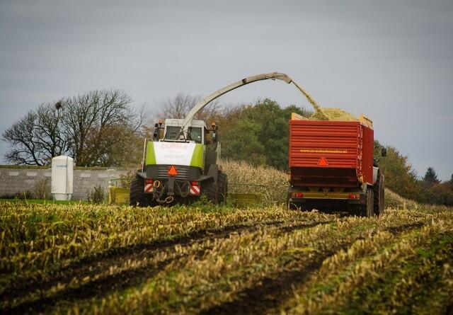 Økologer er optimistiske med høsten