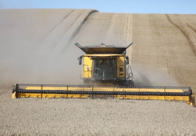 Ukraine har kurs mod rekordhøst
