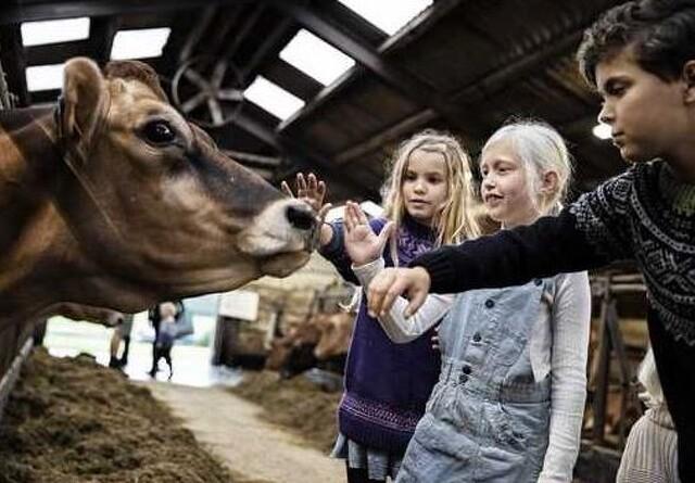 85.000 børn og voksne så, rørte og lugtede til landbruget
