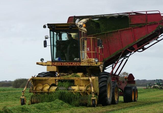 Mange forskellige græsmaskiner samlet i det sønderjyske