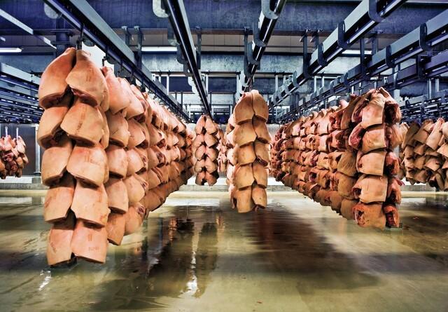Den danske fødevareklynge øger eksporten