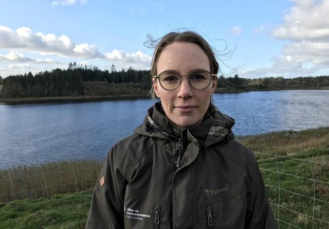 Miljøministeren er helst fri for ulve i Danmark