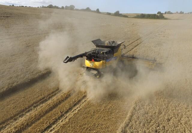 Jyske Markets: Højere eksport sænker de franske hvedelagre