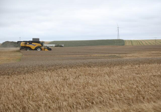 Argentinske afgiftsforhøjelser på afgrøder