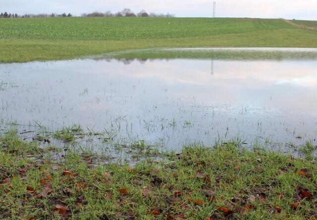 Landbruget advarer mod særregler for vandløb i Aalborg Kommune