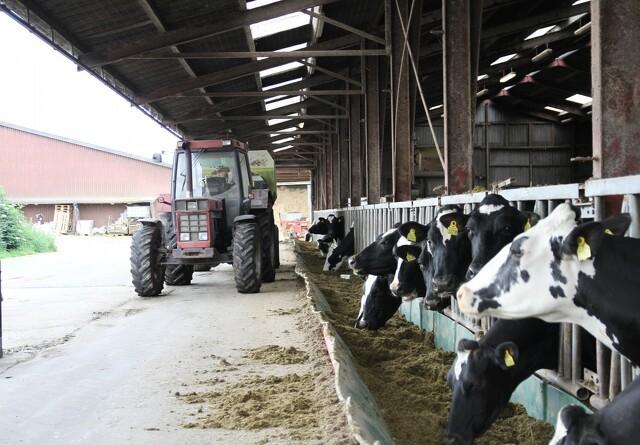 Andelen af ældre landmænd stiger fortsat