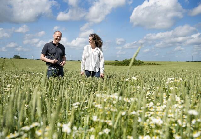 - Dette kan blive en grøn revolution for dansk landbrug