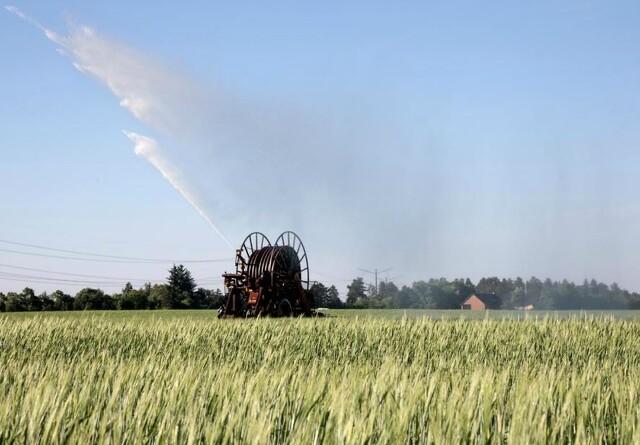 40.000 landmænd kan nu søge om støtte for seks milliarder kroner