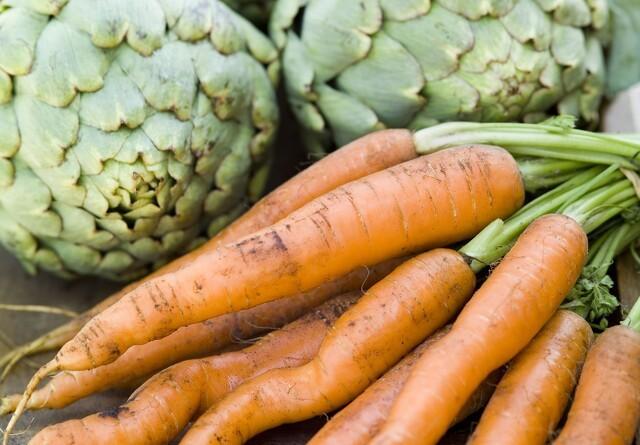 Økologisk Landsforening: Økologi er værktøjet til grøn omstilling i landbruget