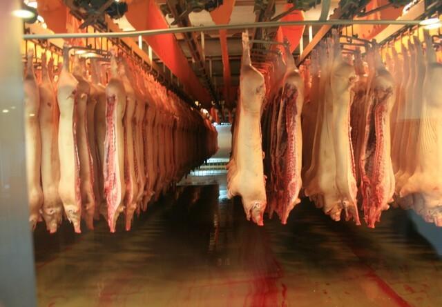 Udsigt til vækst hos danske slagterier
