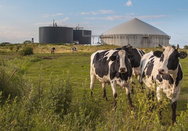 Jyske investeringer i biogasanlæg