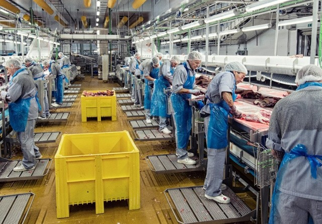 Produktionsdirektør i Beef: Vi kører fortsat med fuld produktion