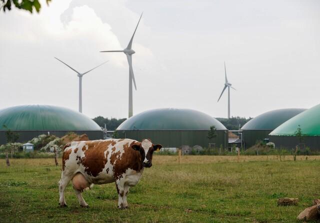 215 millioner kroner i biogas