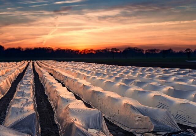 Ufri bevægelighed kan ramme forårets afgrøder